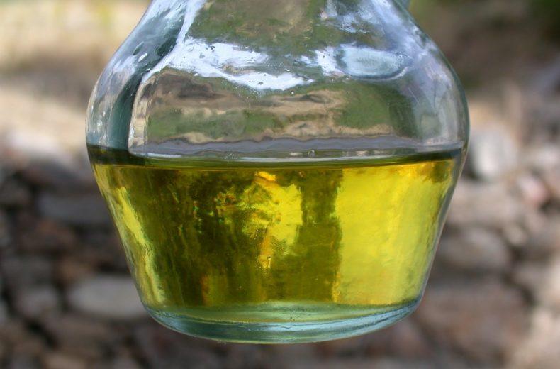 Recogida aceite leon